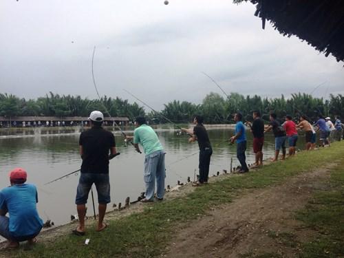 BVPL: Canh bạc tiền tỷ ẩn sau... thú câu cá giải trí
