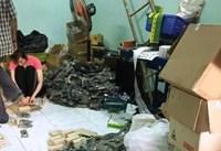 TP Hồ Chí Minh Giám đốc Công ty Việt Thái mô tô bị bắt