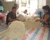 Nem chay Tây Ninh món ăn mang văn hóa Tết