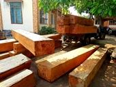 Vụ phá rừng ở Đắk Lắk Sẽ xử lý nghiêm cán bộ để xảy ra sai phạm