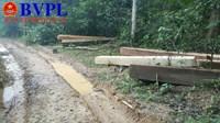 Kỳ 2 Lâm tặc mở đường cho xe ô tô vào đại ngàn chở gỗ