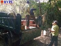 Kỳ 5  Đổ quân truy quét lâm tặc sau phản ánh của báo BVPL