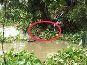 Phát hiện thi thể người đàn ông đang phân hủy trôi trên sông Sài Gòn