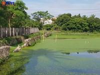 Hồ chứa nước thải bệnh viện hàng chục năm đầu độc người dân