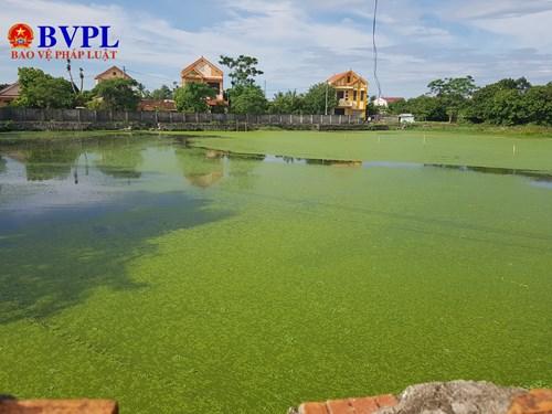 Mức độ ô nhiễm ở hồ chứa nước thải rất trầm trọng