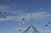Australia bãi bỏ thuế băng vệ sinh