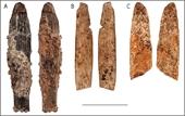 Kinh ngạc về độ tinh xảo của con dao 90 000 năm tuổi vừa được tìm thấy