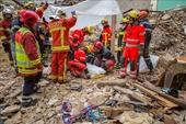 Tìm thấy 8 thi thể nạn nhân vụ sập hai tòa nhà chung tường