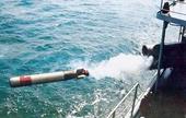 Nội soi sức mạnh ngư lôi nghi của Trung Quốc dạt vào bờ biển Phú Yên