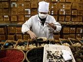 Sẽ có khoa y học cổ truyền trong tất cả các bệnh viện đa khoa tại Hà Nội