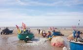 Mùa lộc biển