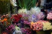 Đêm không ngủ ở chợ hoa Tết lớn nhất Hà Nội