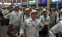 Tuyển 1 500 lao động ngành nông nghiệp sang Hàn Quốc làm việc