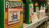 Cấm sử dụng chất diệt cỏ có hóa chất gây ung thư tại Việt Nam