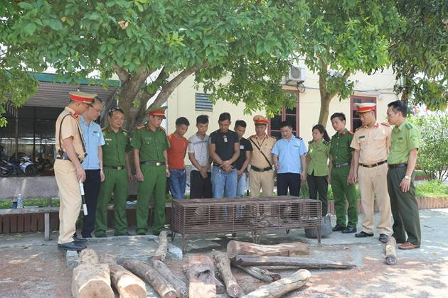 """Phát hiện xe khách biển số Lào vận chuyển hàng """"tươi sống"""" và gỗ trắc trái phép"""