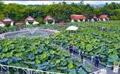 Nhà hàng Tây Hồ - điểm đến hấp dẫn khi ghé thăm Điện Biên Phủ