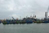 Xem xét đề nghị truy tố vụ lừa đảo chiếm đoạt tiền trợ cấp nhiên liệu đánh cá