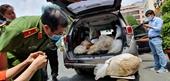Cận cảnh vụ bắt giữ nhóm người Đài Loan, Trung Quốc vận chuyển 500 kg ma tuý tổng hợp