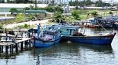 Làm giả hồ sơ, gian lận trong đấu thầu, 2 nhà thầu ở Nghệ An bị đề nghị xử lý