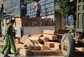 NÓNG Khởi tố vụ án Cơ quan CSĐT Bộ Công an bán đấu giá gỗ vật chứng sai quy định