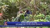 Quảng Bình bắt giữ thêm đối tượng vận chuyển lượng lớn ma túy
