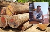 """Truy tố 25 bị can trong vụ trùm gỗ lậu Phượng """"râu"""""""