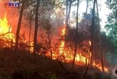 Tin thêm về một phụ nữ chết thảm khi chữa cháy rừng