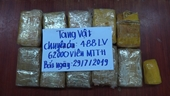 Triệt phá đường dây đưa 62 000 viên ma túy từ Lào về Việt Nam