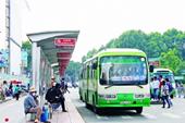 Thành phố Hồ Chí Minh giải ngân 494 tỷ đồng tiền trợ giá xe buýt