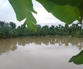 Bé trai 9 tuổi đuối nước thương tâm trong lúc xuống hồ lấy dép