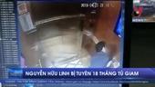Tòa tuyên phạt bị cáo Nguyễn Hữu Linh 18 tháng tù giam