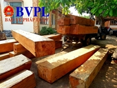 Mua gỗ về xây chùa, chủ thầu dính quả lừa cực đắng