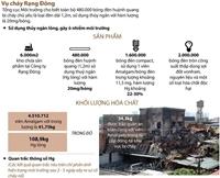 480 000 bóng đèn huỳnh quang của Rạng Đông có thủy ngân