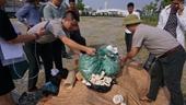 Hà Nội tiêu hủy 82 kg ngà voi
