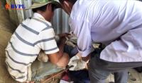Đà Nẵng vào cuộc vụ công nhân bị thanh sắt dài 4m rơi đâm xuyên người