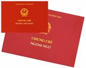 Hai trường Đại học ở Nghệ An phải dừng cấp chứng chỉ tin học, ngoại ngữ