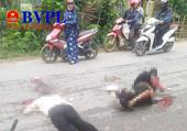 Chồng bị ô tô cán tử vong, vợ nguy kịch sau khi đâm phải   chó