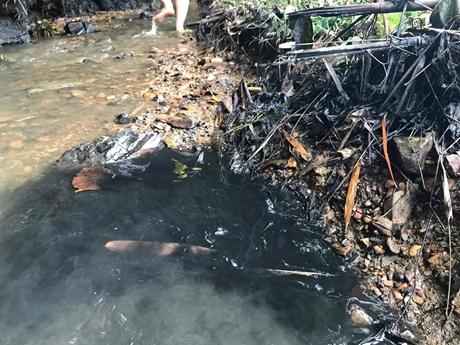 Hãi hùng con suối ở vùng thượng lưu sông Đà nghi bị đổ trộm dầu thải