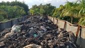 Bắt quả tang đối tượng đổ trộm chất thải nguy hại gần khu dân cư