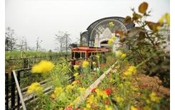"""Ga tàu hỏa leo núi Mường Hoa """"bỏ bùa"""" NTK Lê Thanh Hòa như thế nào"""