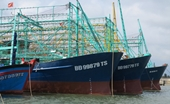 Chậm trễ thủ tục bảo hiểm, 5 tàu cá vỏ thép đóng mới theo Nghị định 67 nằm bờ