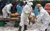 Bắt tạm giam Chủ tịch và 3 cán bộ xã ăn bẩn tiền hỗ trợ tiêu hủy dịch tả lợn châu Phi