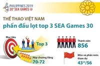 Thể thao Việt Nam phấn đấu lọt Top 3 SEA Games 30