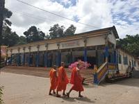 Đến chùa Dơi giải mã bí ẩn ngàn năm về loài dơi khổng lồ và mộ heo 5 móng