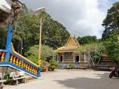 Tiết lộ chấn động của người Việt Nam đầu tiên nghiên cứu về dơi ở chùa Dơi