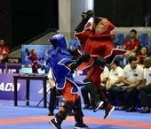 Giành 7 huy chương vàng ngày thi đấu đầu tiên, Đoàn Việt Nam tạm xếp thứ nhì
