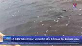 Lộ diện nghi phạm vụ nước biển đổi màu tại Quảng Ngãi