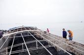 Cảnh sát biển tạm giữ 800 tấn than không rõ nguồn gốc