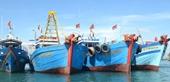 Điều tra nhiều tàu cá chìm đắm bất thường