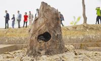 Phát hiện khảo cổ chấn động Bãi cọc gỗ gần 1 000 năm tuổi - lắng hồn núi sông